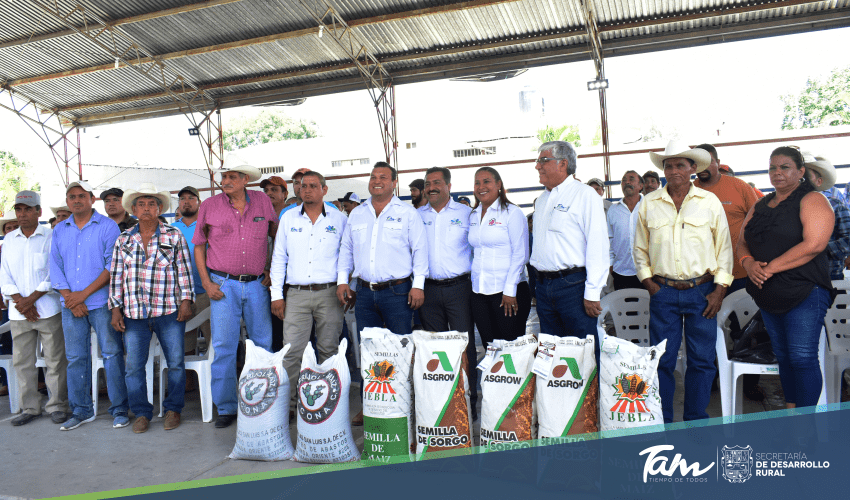 State Government delivers certified seed and promotes the production of pagua