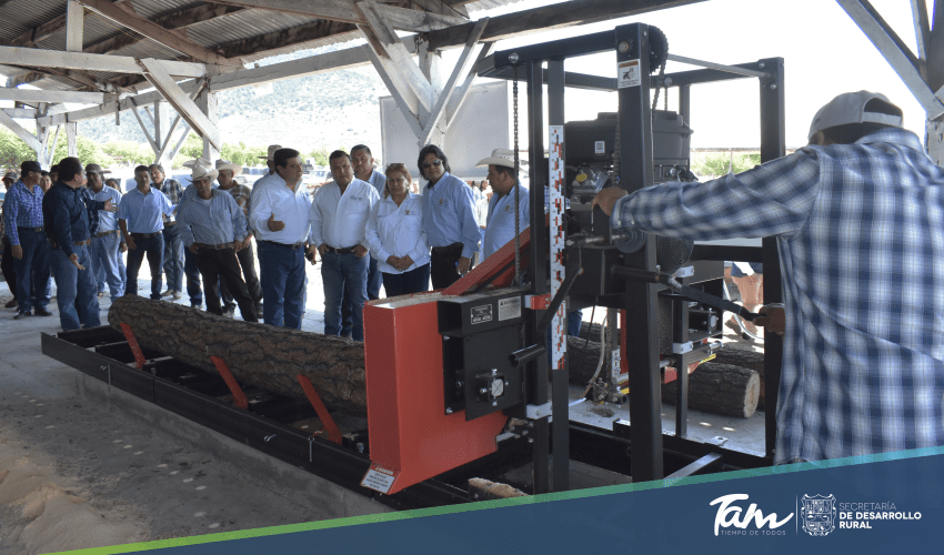 Sawmill inaugurated, will process more than one thousand 300 cubic meters of wood per year