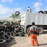 GOVERNMENT OF THE STATE ADVANCES 72 PERCENT IN TRIMMING OF TIRES